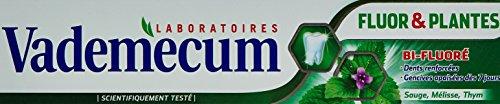 vademecum-dentifrice-fluor-et-plantes-tube-75-ml-lot-de-2