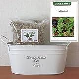 ベビーリーフ(西洋七草)の栽培セット/標準セット(液体肥料無し)プランターホワイト仕様