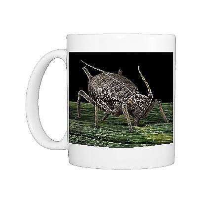 Photo Mug Of Lrds-1 Black Aphid From Ardea Wildlife Pets