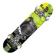 Roller Derby Roller Street Series Skateboard - RDB-20