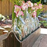 Bottle Planter Box, 10 Glass Bottles in a Wood Box
