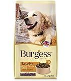 Burgess Sensitive Adult Dog Turkey and Rice 12.5 Kg