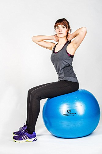 65 Cm Anti Burst Exercise Balance Ball Extra Thick For