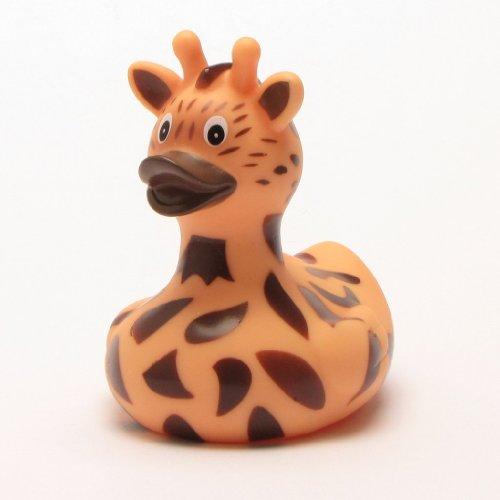 Giraffe Bathrooms Are Wild Net Surfer Guide