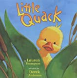 img - for Little Quack book / textbook / text book