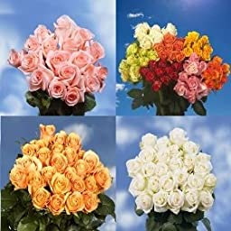 Send Flowers On Mother\'s Day | 75 Long Stem Assorted Colors Roses