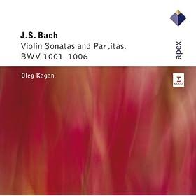 Violin Partita No.1 In B Minor BWV1002 : I Allemande