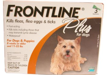 Flea and Tick Control for Dogs