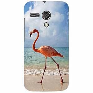 Casotec Egret Bird on Sea Design 3D Printed Hard Back Case Cover for Motorola Moto G 1st Generation