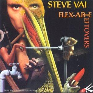 Flexable Leftlovers