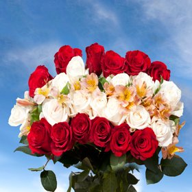 Top Secret 6 Bouquets 12 Red Roses 12 White Roses 4 Fillers