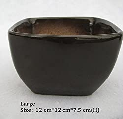 Chhajed Garden Ceramic Pots Brown Large