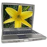 """Dell Latitude D600 Pentium M 1.40 Ghz 512 RAM 30gb 14"""""""
