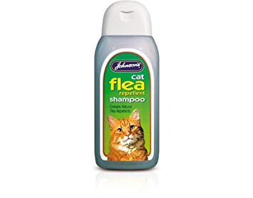 Flea Medication For Cats How They Work