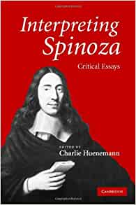 interpreting spinoza critical essays