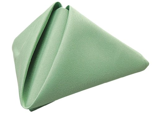 Phoenix 20 By 20-Inch Napkins, Seafoam Green, Package Of 12 front-482456