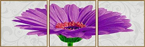schipper 609400683 malen nach zahlen gerbera jamesonii triptychon 40 x 40 cm violet. Black Bedroom Furniture Sets. Home Design Ideas