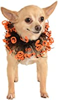 Rubies Costume Halloween Classics Collection Pet Costume, Small to Medium, Black and Orange Jack-O-Lantern Collar by Rubies Decor