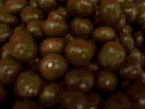 No Sugar Added Chocolate Covered Raisins, 8 Oz. Bag