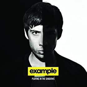 Natural Disaster (Laidback Luke Vs. Example) (Album Extended) [Explicit]