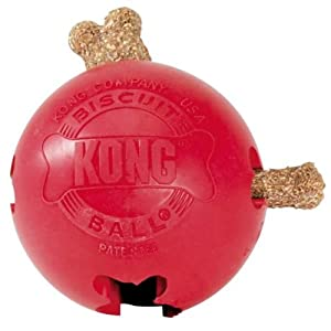 Pet Supplies : Pet Chew Toys : KONG Biscuit Ball Dog Toy