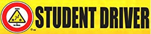 Rookie @ the Wheel© Student Driver Decal, Removable - (Set of 3)