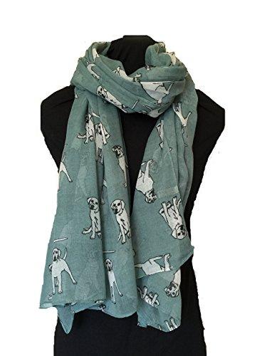 pamper-yourself-now-womens-sketched-labrador-dog-design-scarf-scarf-185cm-x-95cm-aqua-green