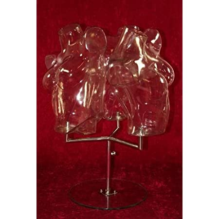 Window mannequins 3x torso female Transparent