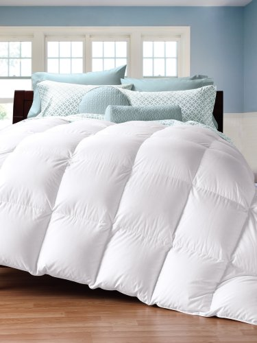 Remember To Do Not Pause To Get Cuddledown 450tc Down Comforter Oversize Queen Level 1 Today Along With My Best Operate