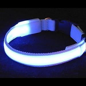 Collier Bleu Clignotant Ajustable Pour Chien Petite Taille - Fibre Optique LED