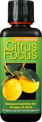 Growth Technology Gtcit300 300Ml Citrus Focus Balanced Liquid Concentrated Fertiliser