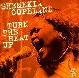 Sounds Like The Devil - Shemekia Copeland