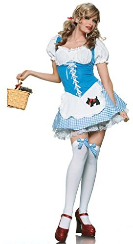 Dorothy Girl Costume - Large - Dress Size 12-14