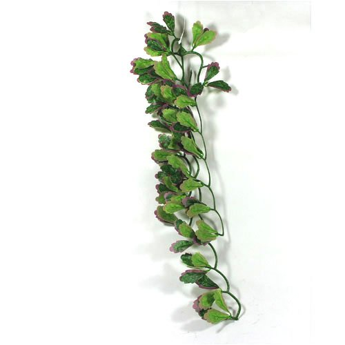 Reptile Vivarium Jungle Silk Plant Red Croton Large