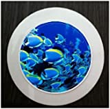 BLUE TROPICAL FISH TAX DISC HOLDER 055