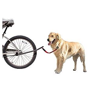 Bicycle Dog Leash