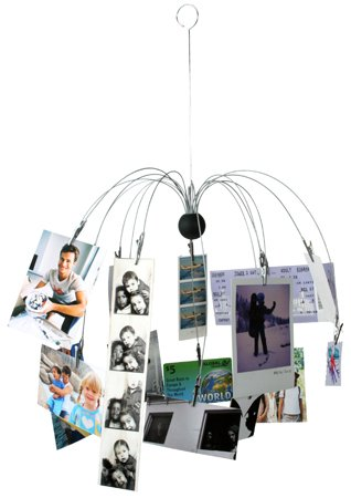 Spider Photo Clip Mobile Picture Photograph Hanging Display