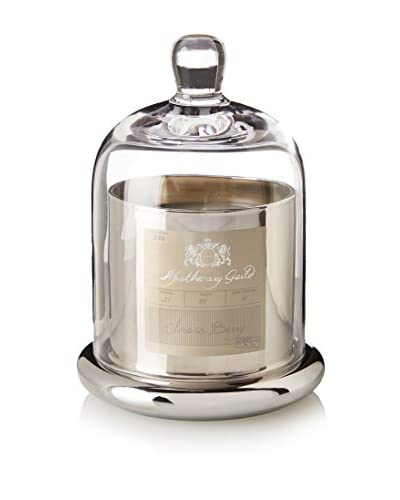 Apothecary Guild Snow Berry 3.1-Oz. Candle with Glass Dome, Silver