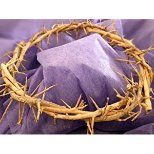 Amazon.com: Crown of Thorns/ Authentic Crown of Thorns From the ...
