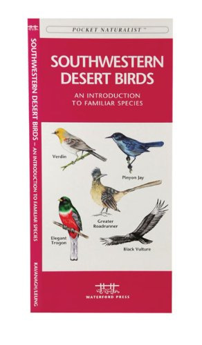Southwestern Desert Birds: An Introduction to Familiar Species