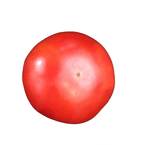 sioux-heirloom-tomato-20-seeds