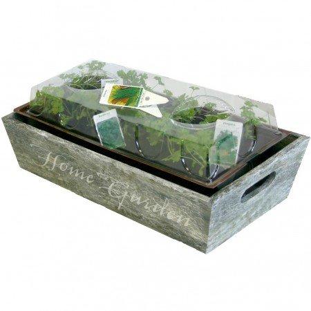 mini-jardin-herbes-aromatiques