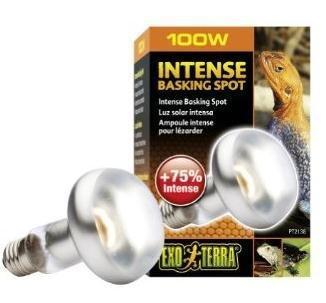 100-W120-volt-Exo-Terra-sun-glo-Basking-Infrarot-Spot-Lampe-Terrasse-Keramik-Hitze-emittenten-Exo