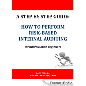 A Step By Step Guide: How to Perform Risk Based Internal Auditing for Internal Audit Beginners (English Edition)