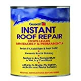Geocel 25200 Instant Roof Repair Brushable Coating, 1 qt, Clear (Tamaño: ?ne ???k)