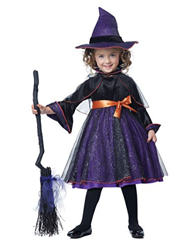California Costumes girls Toddler Hocus Pocus Witch Costume