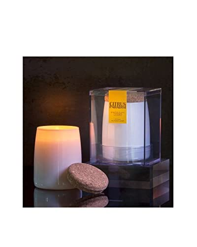 Aesthetic Content Set of 2 Citrus Paradisi 9.5-Oz. Candles