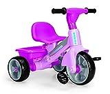 FEBER - Baby Plus Music, triciclo, color rosa (Famosa 800010210)