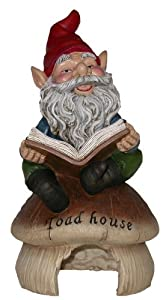 Alpine Gnome Reading Book on Toad House Statue