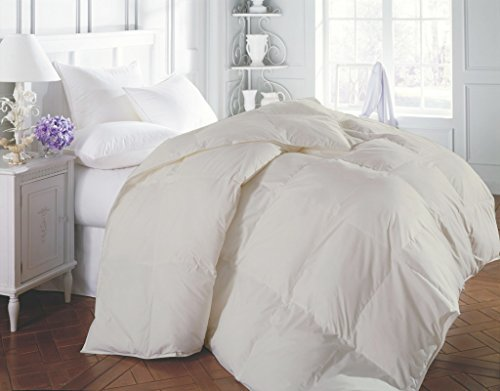 600 Thread Count Luxurious and Hypoallergenic 100% Egyptian Cotton Duvet Ivory Queen By Kotton Culture Solid (Cocoon Feel 200 GSM Down Comforter with Microfibre filling) (Alternative Down Comfortor compare prices)